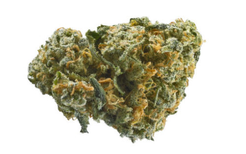 ak-47 weed for sale
